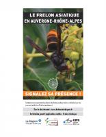 Flyer – signalez le Frelon asiatique 2019